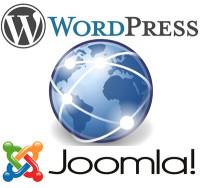 Content Management Systeme: Internetseiten selbst anpassen und erweitern